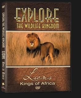 DVD-Lions-3D.jpg