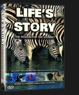 LifeStory-2-3D.jpg