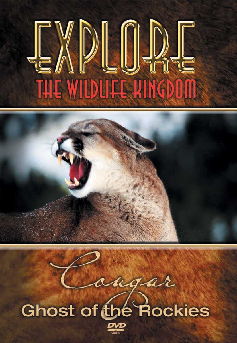 Explore The Wildlife Kingdom : COUGAR Ghost Of The Rockies - DVD
