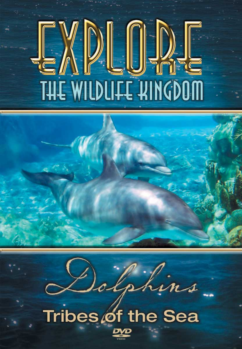 Explore The Wildlife Kingdom : DOLPHINS Tribes of the Sea - DVD