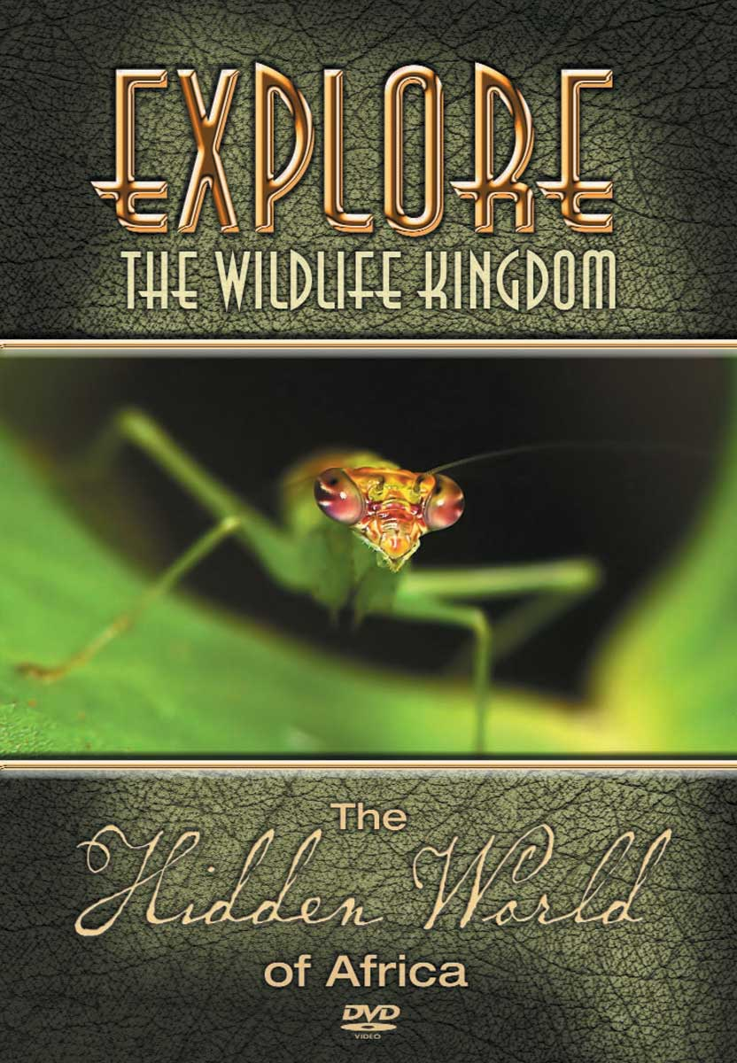 Explore The Wildlife Kingdom : THE HIDDEN WORLD of Africa - DVD
