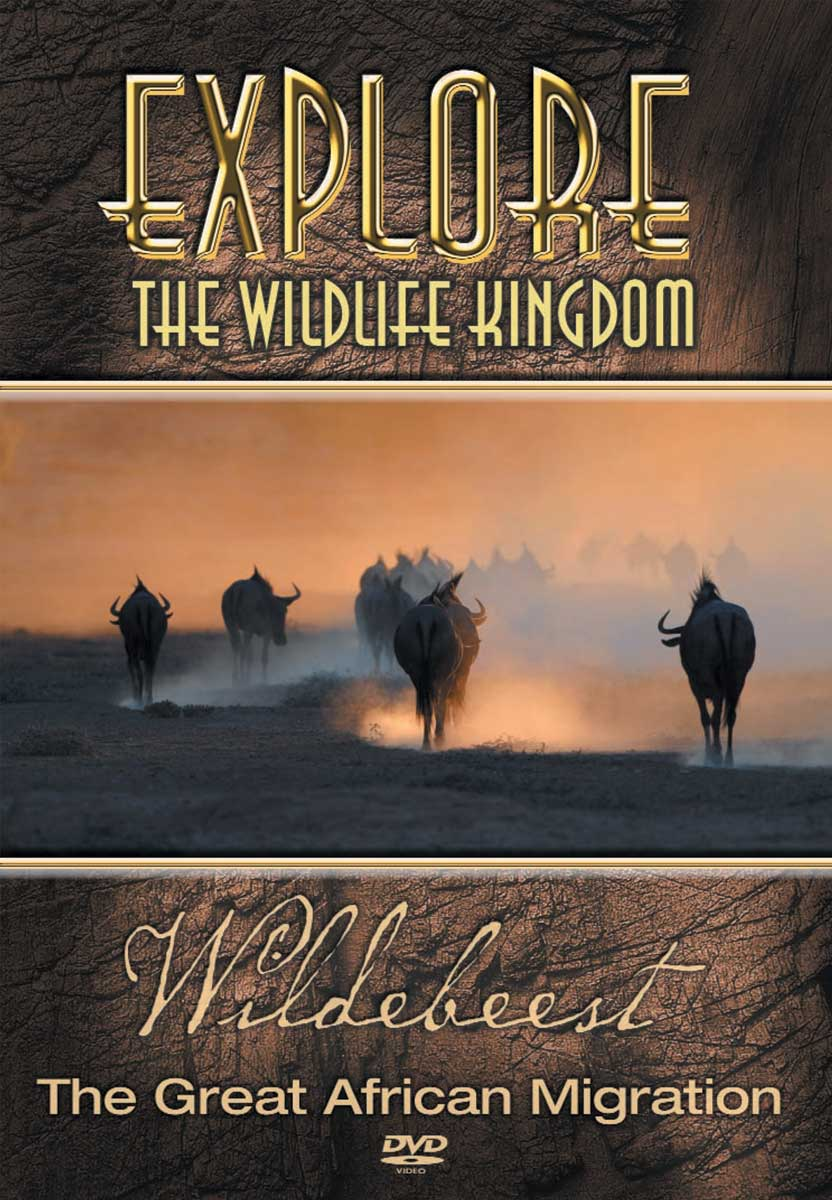 Explore The Wildlife Kingdom : WILDEBEEST  The Great African Migration - DVD