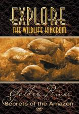 explore-golden-river-dvd-cover