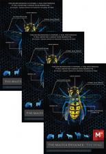 the_master_designer_3pack_DVD