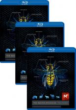the_master_designer_3pack_bluray