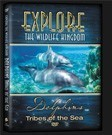 tn-DVD-Dolphins-3D.jpg